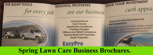 Spring Lawn Care Business Brochure