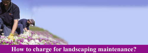 How to charge for landscape maintenance.