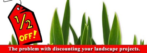 Landscape Project Discounting Problem