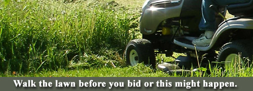 Walk the lawn before you bid it.