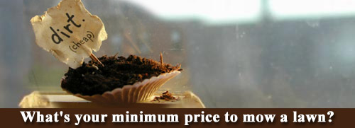 Minimum lawn care price