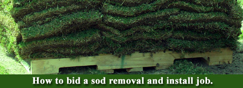 How to bid a sod removal and install job.