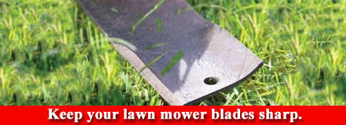 Sharpening your lawn mower blades