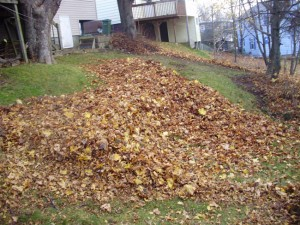 steep leaf cleanup job bid example 2