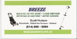 Lawn Care Business Card 1