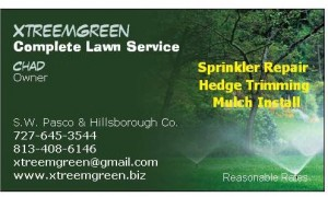 Lawn Care Business Card 4