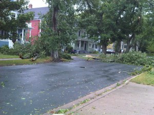 lawn care marketing for storm cleanups