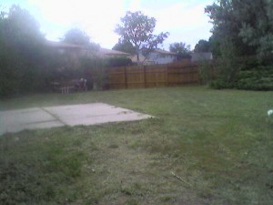After yard cleanup