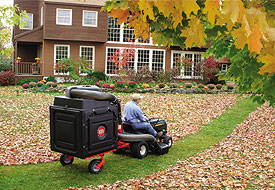 How to get fall leaf clean up customers. | Lawn Care Business ...
