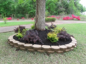 landscape job example 2.