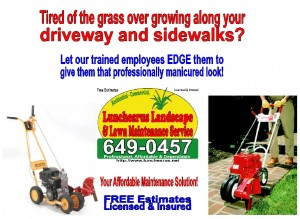 Lawn Edging Postcard