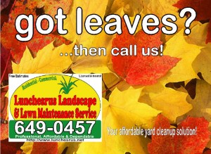 Leaf Cleanup Postcard