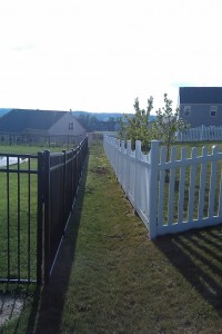Fence line brush planting job