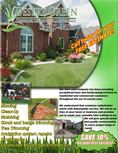 Lawn care flyer design