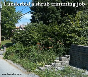 I underbid a shrub trimming job.