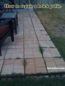 How to repair a brick patio.